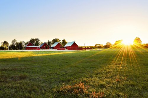 Farm Insurance in Caledonia, MN
